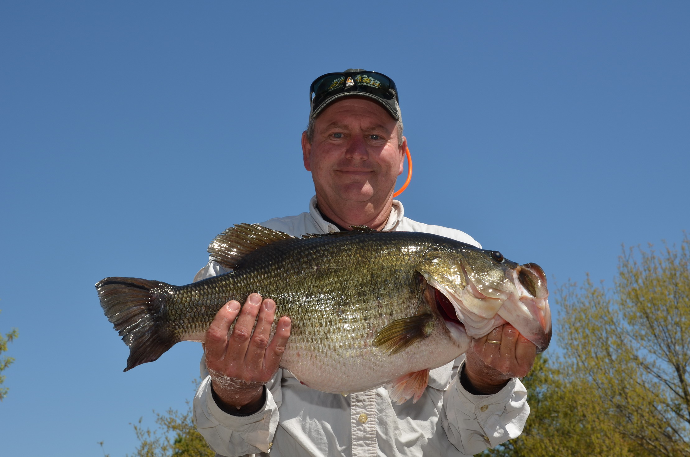 Lake fork bass fishing produces another sharelunker no 547 for Texas parks and wildlife fishing report