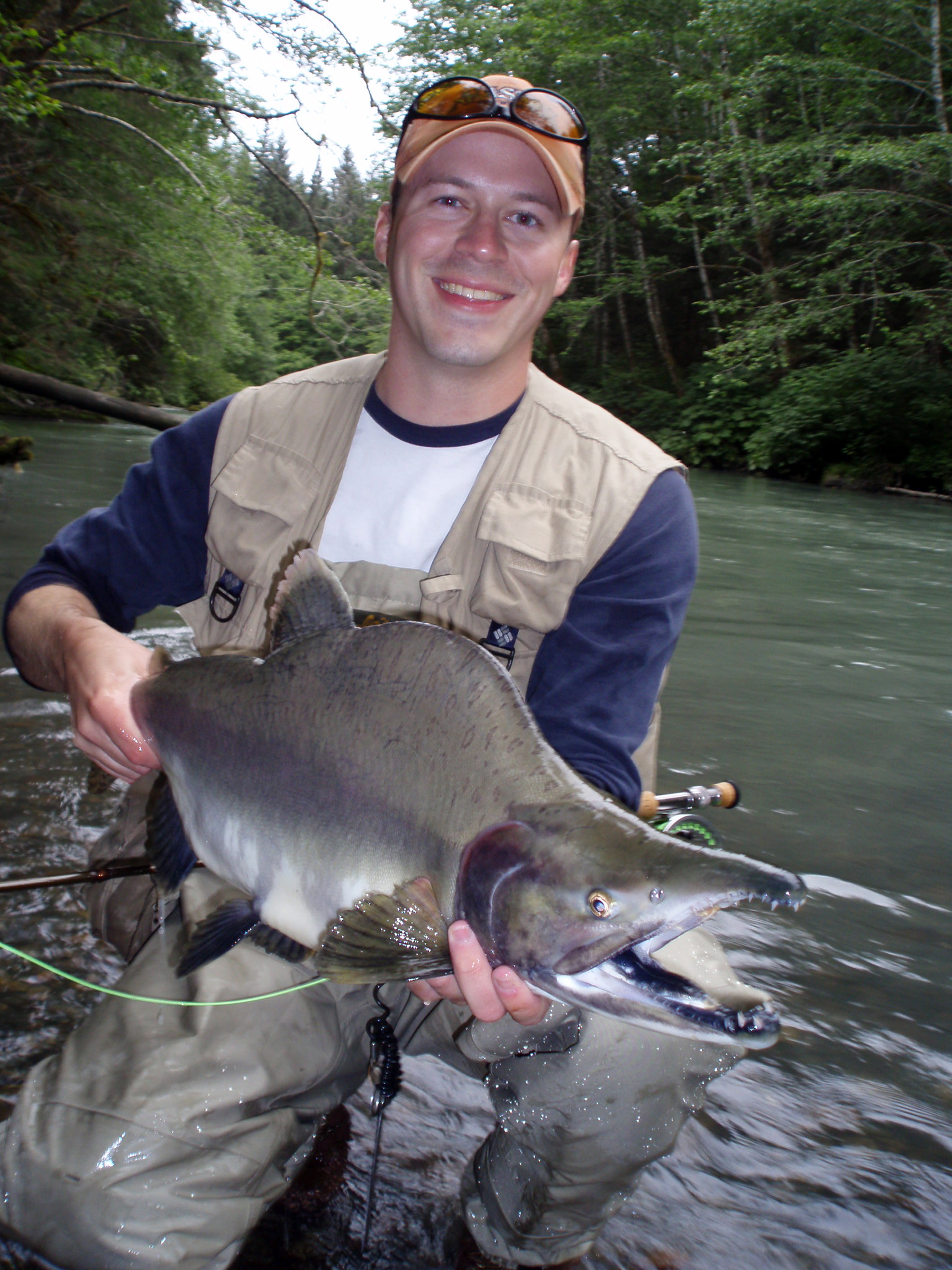 Alaska pink salmon fishing features quantity quality for Alaska salmon fishing
