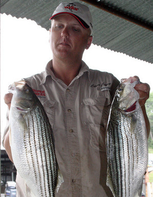 Texas fishing provides striped bass