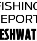 Freshwater fishing conditions and catches across Texas