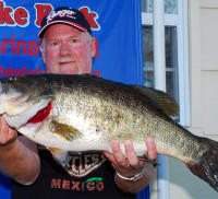 Largemouth bass are the most sought game fish in Texas