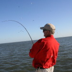 Rockport fishing trip again highlights variety of marine wildlife