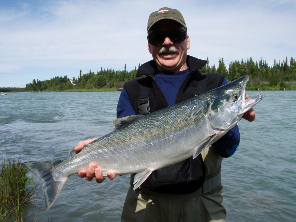 Alaskan sockeye salmon fishing king among summer outdoor for Alaskan salmon fishing