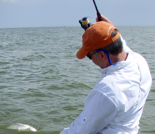 The limit for speckled trout across much of Texas is 10 fish per day between 15 and 25 inches.