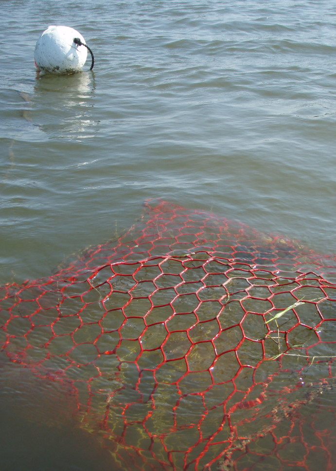 Texas Abandoned Crab Trap Removal Program to coincide with Louisiana effort