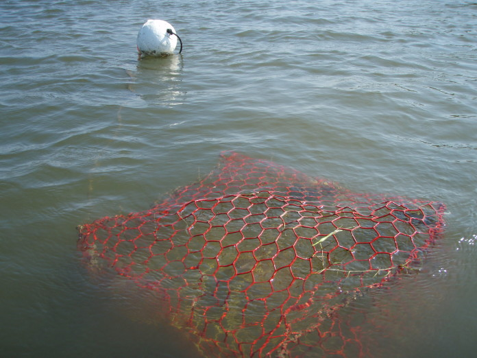 Texas Crab Trap Removal program set for 2014