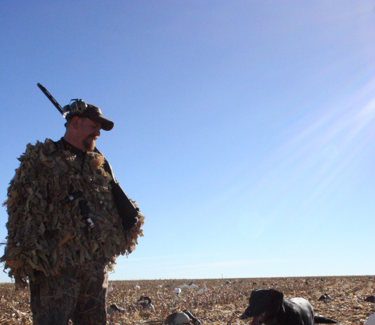 Texas has seen a huge decline in goose and goose hunter numbers