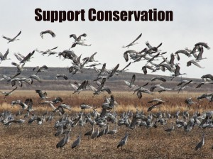 SupportConservation