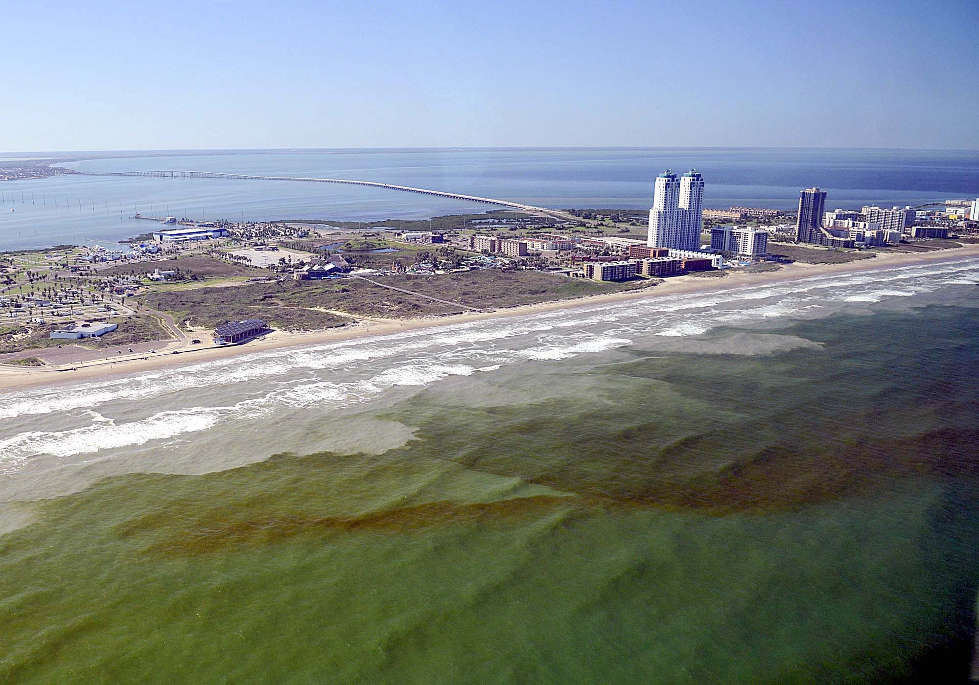 Red tide in Texas brings fish kills, scientific approach into causes