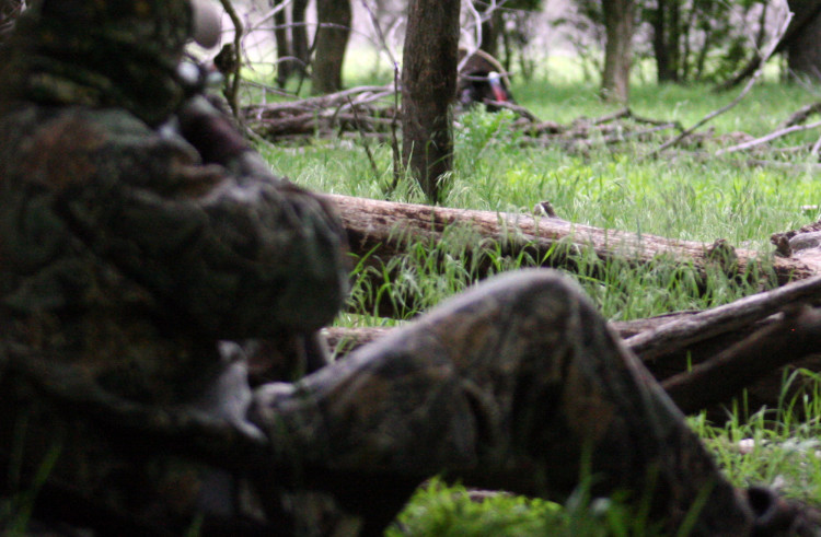 East Texas spring turkey hunting outlook likely to be diminished